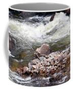 Poudre River 5 Coffee Mug
