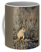 Prairie Dog Alert Coffee Mug