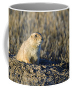 Prairie Dog Watchful Eye Coffee Mug