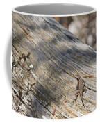 Prairie Lizard _ 1a Coffee Mug