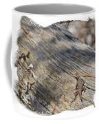 Prairie Lizard _ 1b Coffee Mug