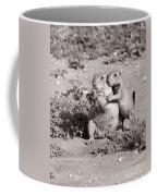 Prairie Love Coffee Mug