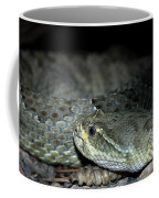 Prarie Rattle Snake Coffee Mug