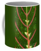 Prayer Plant Vertical Coffee Mug