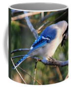 Praying Blue Jay Coffee Mug