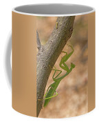 Praying Mantis On The Hunt Coffee Mug