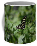 Precious Black And White Zebra Butterfly In The Spring Coffee Mug