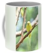 Precious Little Yellow Parakeet In The Wild Coffee Mug