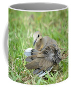 Preening Dove Coffee Mug