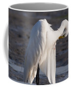 Preening Coffee Mug