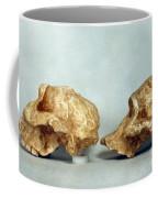 Prehistoric Skulls Coffee Mug