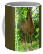 Pretty Boy Coffee Mug