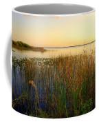 Pretty Evening At The Lake Coffee Mug