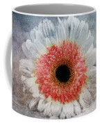 Pretty Gerbera Macro Coffee Mug
