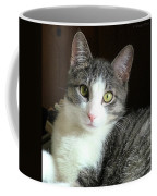Pretty Girl Kitty Coffee Mug