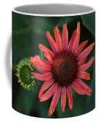 Pretty In Coral Coffee Mug