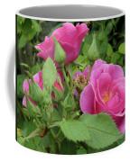 Pretty In Pink 3 Coffee Mug