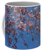 Pretty In Pink - A Flowering Cherry Tree And Blue Spring Sky Coffee Mug
