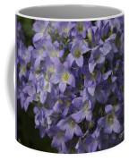 Pretty In Purple Coffee Mug
