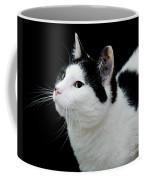 Pretty Kitty Cat 2 Coffee Mug