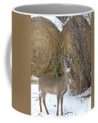 Pretty Lady Coffee Mug