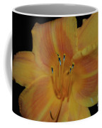 Pretty Orange Daylily Flowering With Pollen On It's Stamen Coffee Mug