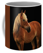 Pretty Palomino Pony Coffee Mug