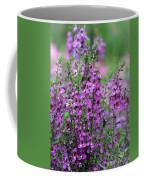 Pretty Pink And Purple Flowers Coffee Mug