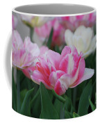 Pretty Pink And White Striped Ruffled Parrot Tulips Coffee Mug