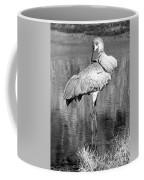 Pretty Preener Black And White Coffee Mug