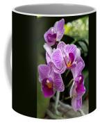 Pretty Purple And White Coffee Mug