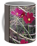 Pretty Red And Yellow Flowers In The Twigs Coffee Mug
