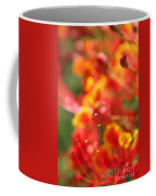 Pride Of Barbados Coffee Mug