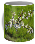 Pride Of The Hedgerow Coffee Mug