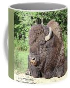 Prim And Proper Bison Coffee Mug