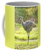 Primping Sandhill Crane Coffee Mug