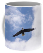 Prince Rupert Eagle Flight Coffee Mug