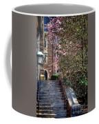 Princeton University Old Stairway Coffee Mug