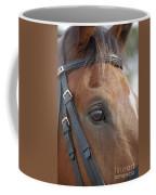 Prinz Coffee Mug