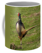 Private Pheasant Coffee Mug