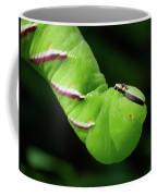 Privet Hawk Moth Caterpillar Coffee Mug