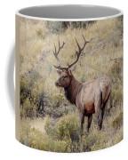 Prize Bull Elk Coffee Mug
