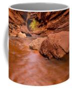 Professor Creek Canyon 2 Coffee Mug