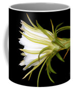 Profile Night Blooming Cereus Coffee Mug