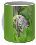 Profile Of A Gray Iguana Perched In A Bush Coffee Mug