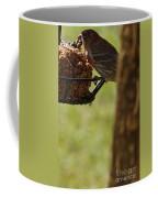 Profile Of A Male House Finch Coffee Mug