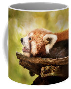 Profile Of A Red Panda Coffee Mug
