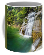 Profile Of The Lower Falls At Enfield Glen Coffee Mug