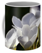 Promises In White Coffee Mug