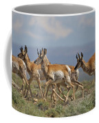 Pronghorn Antelope Running Coffee Mug